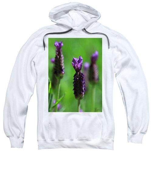 Lavender Spike Sweatshirt