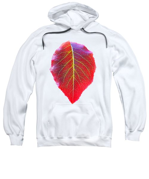 Leaf Of Autumn Sweatshirt
