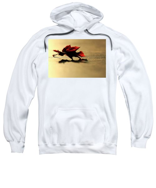 Leaf On The Garage Floor Sweatshirt