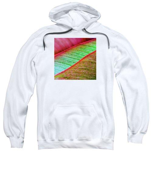 Leaves In Color  Sweatshirt