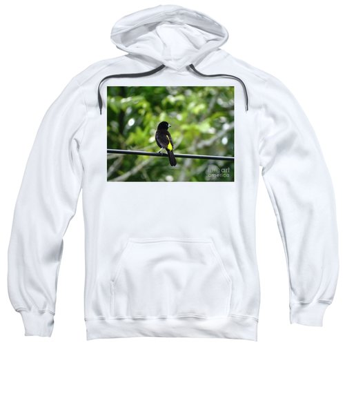 Lemon-rumped Tanager Sweatshirt
