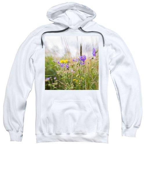 #lensbaby #composerpro #sweet35 #floral Sweatshirt by Mandy Tabatt