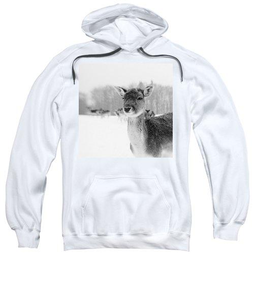 #lensbaby #composerpro #sweet35 Sweatshirt