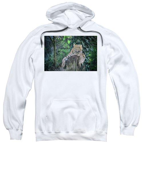Leopard Lookout Sweatshirt