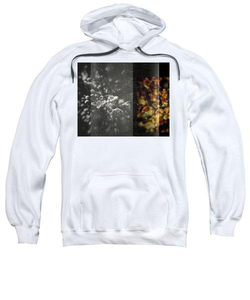Let The Wind Go Sweatshirt