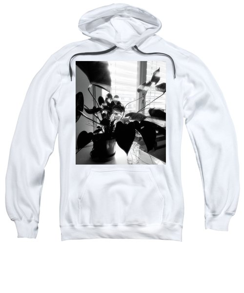 Light And Shadow 11 Sweatshirt