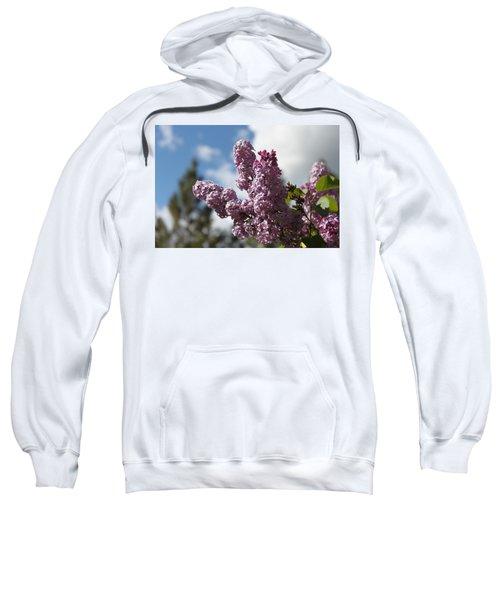 Lilacs 5547 Sweatshirt