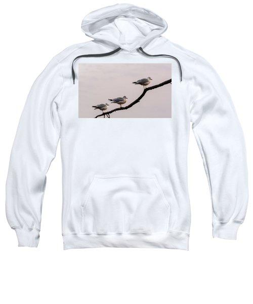 Line-up Sweatshirt
