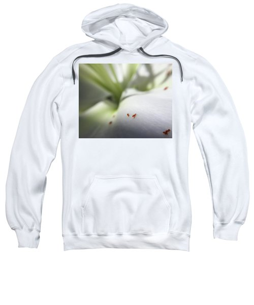 Little Alps Sweatshirt