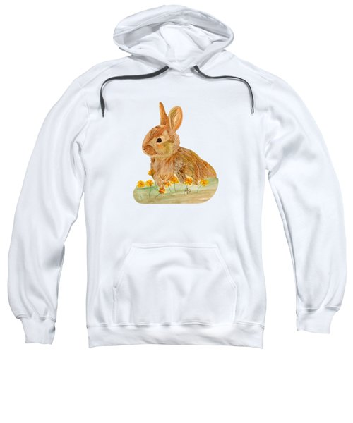 Little Rabbit Sweatshirt by Angeles M Pomata