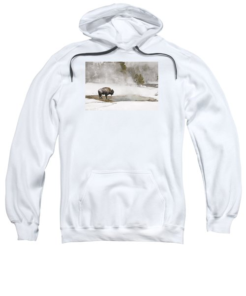 Sweatshirt featuring the photograph Bison Keeping Warm by Gary Lengyel