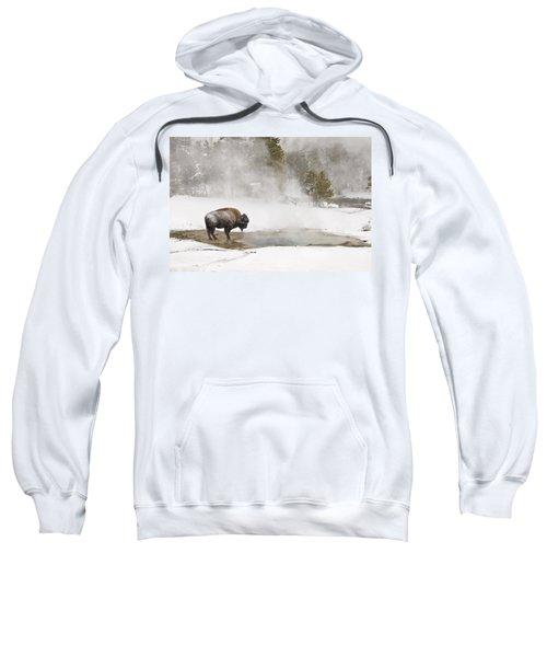 Bison Keeping Warm Sweatshirt