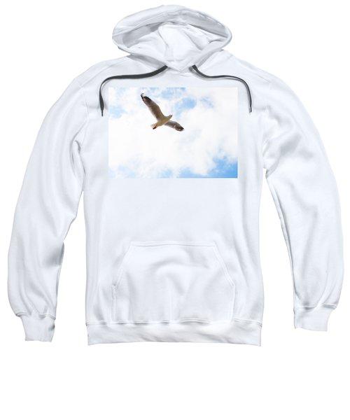 Lone Flyer Sweatshirt