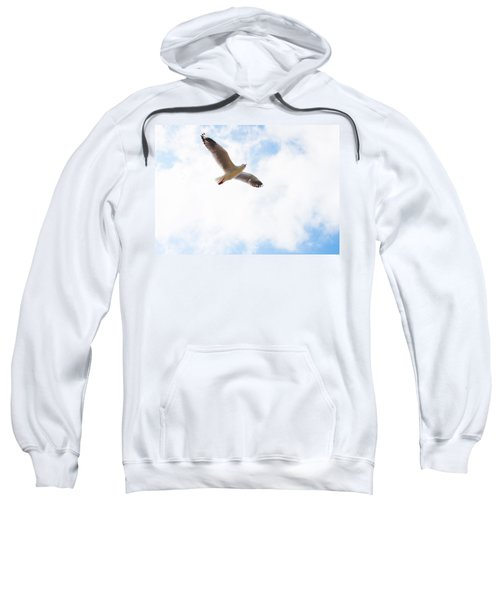 Lone Flyer Sweatshirt