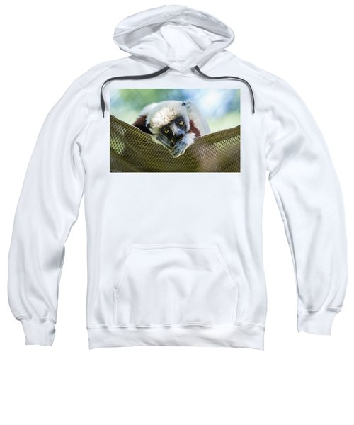 Lonely Lemur Sweatshirt