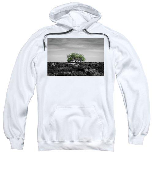 Lonely Tree Sweatshirt