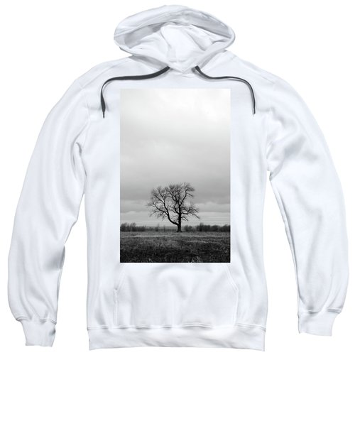Lonely Tree In A Spring Field Sweatshirt