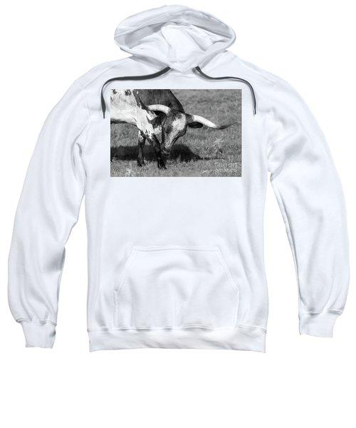 Longhorn Sweatshirt