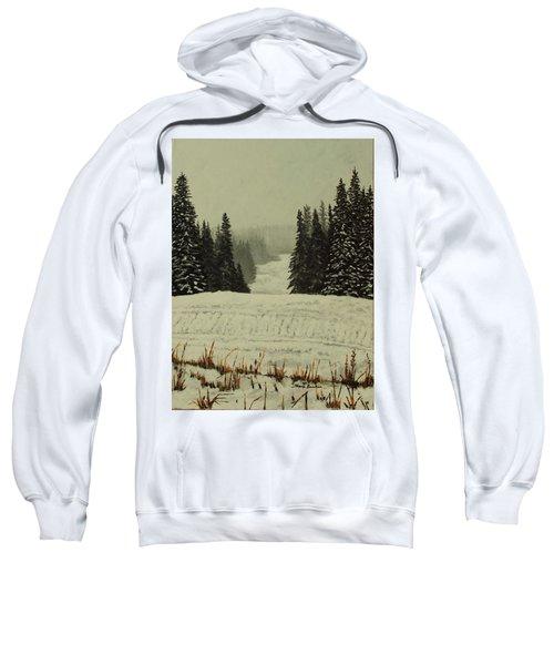 Low Ceiling Sweatshirt