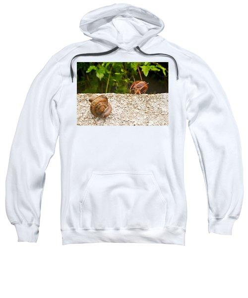 Madam Let Me Introduce Myself Sweatshirt