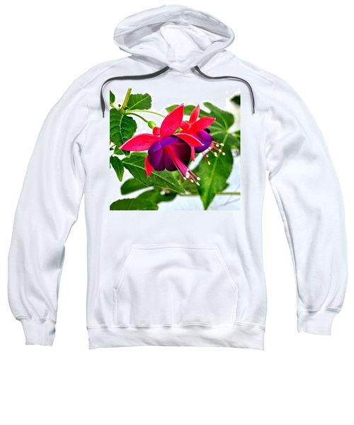 Magic Dancers Sweatshirt