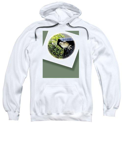 Mailbox  Cameo Sweatshirt