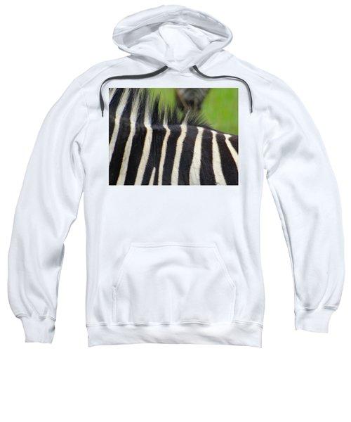 Mainly Mane Sweatshirt by Exploramum Exploramum