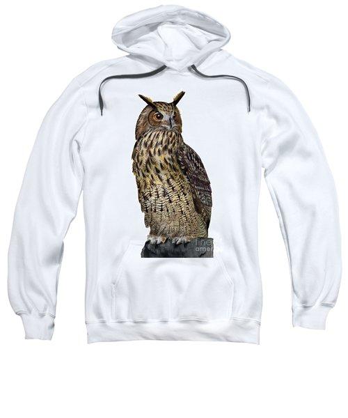 Majestic Eurasian Northern Eagle Owl Bubo Bubo - Hibou Grand-duc - Buho Real - Nationalpark Eifel Sweatshirt