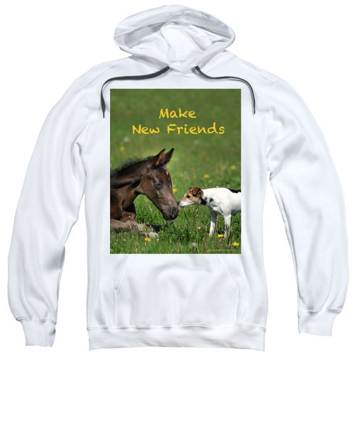 Make New Friends Sweatshirt