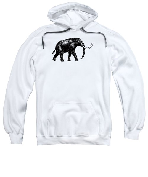 Mammoth Tee Sweatshirt by Edward Fielding