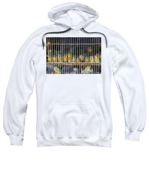 Market Finches Sweatshirt