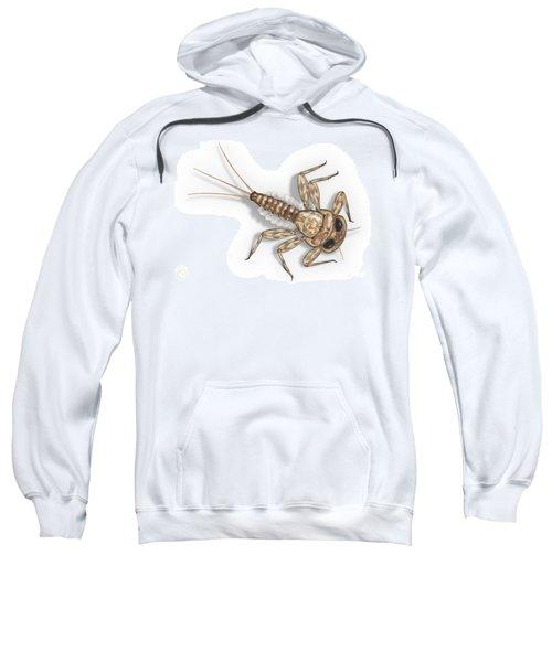 Mayfly Larva Nymph Rithorgena Ecdyonurus Venosus - Moscas De May Sweatshirt