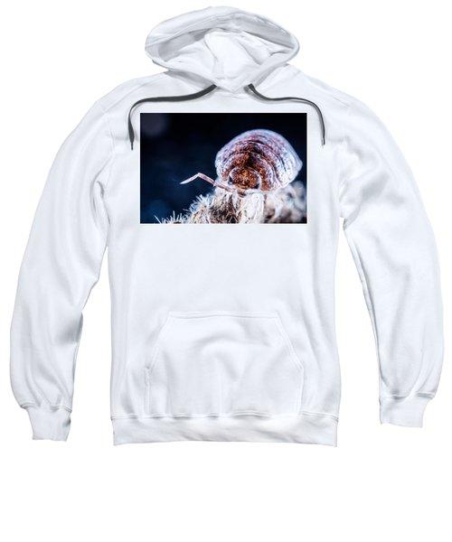 Mean Looking Sweatshirt