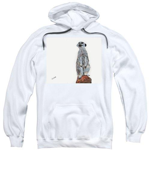 Meer Curiosity Sweatshirt