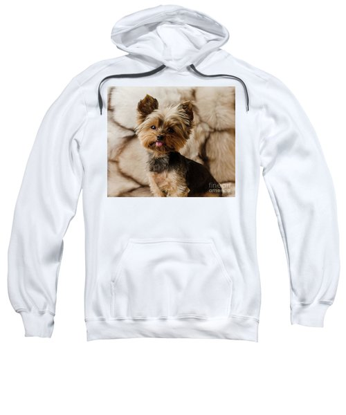 Melanie On Fur Sweatshirt