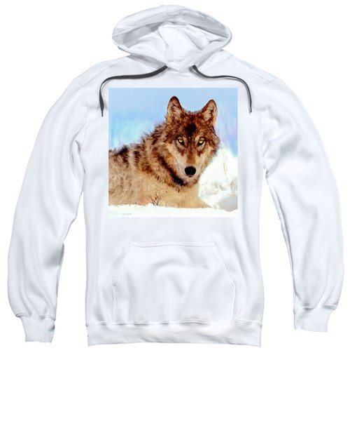 Mexican Wolf Painting Sweatshirt