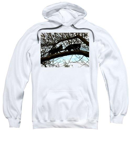 Midi 3 Sweatshirt