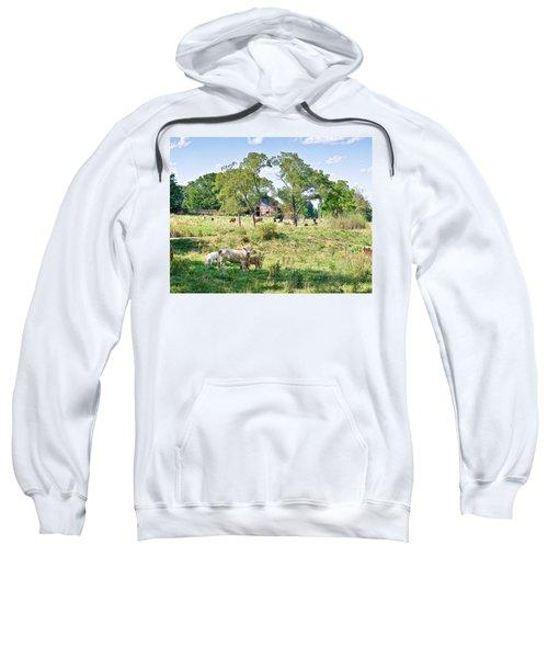 Midwest Cattle Ranch Sweatshirt