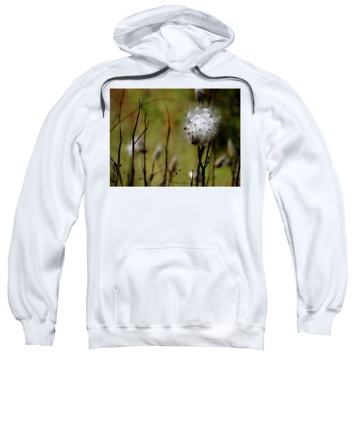Milkweed In A Field Sweatshirt