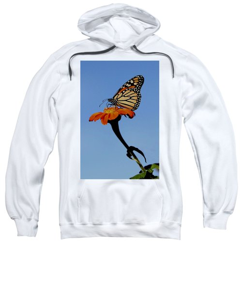 Monarch On Zinnia  Sweatshirt