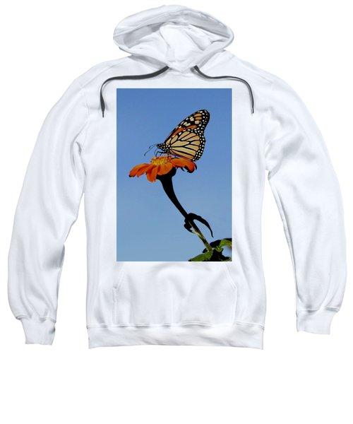 Monarch On Zinnia  Sweatshirt