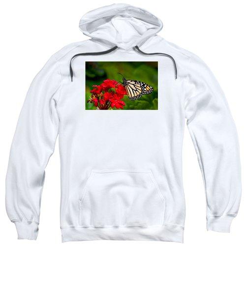 Monarh Butterfly Sweatshirt