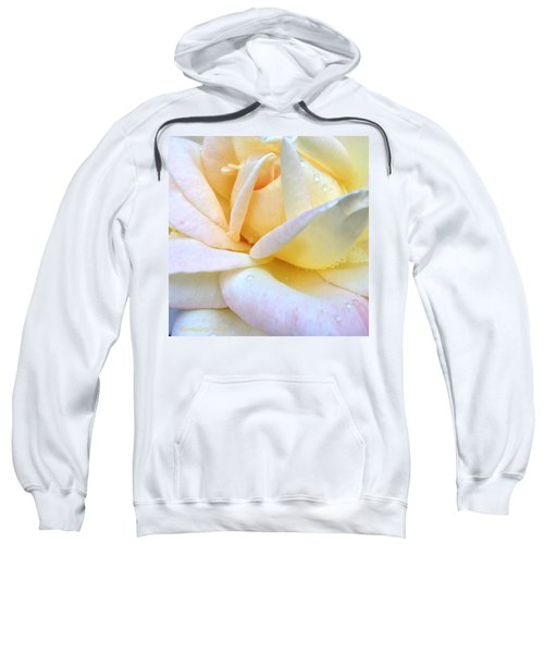 Morning Dew On A Pale Yellow Rose Sweatshirt