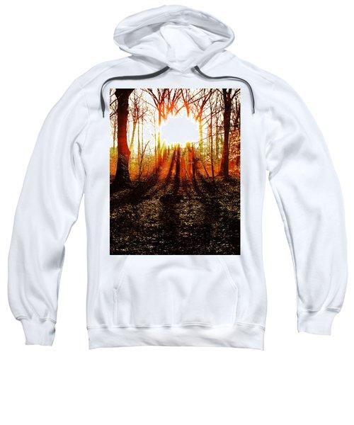 Morning Glow Sweatshirt