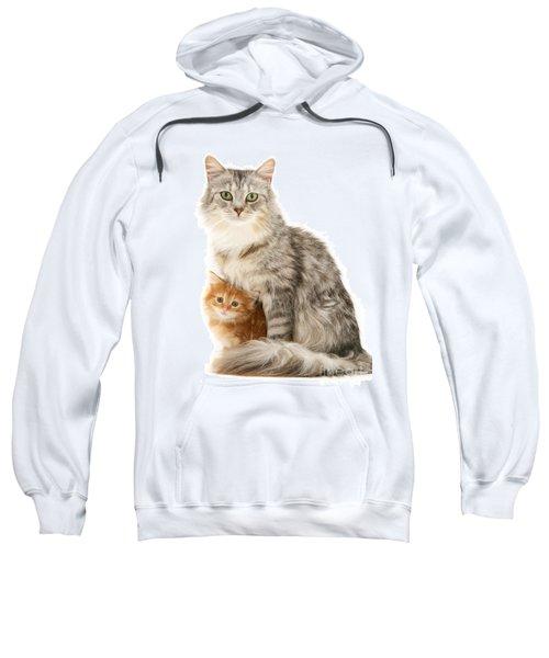 Mother Cat And Ginger Kitten Sweatshirt
