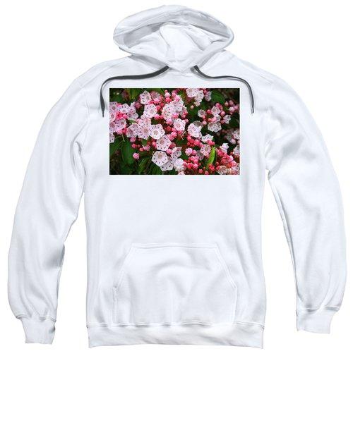 Mountain Laurels Sweatshirt