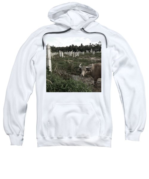 Mourning In The Palm-tree Graveyard Sweatshirt