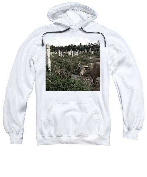 Mourning In The Palm-tree Graveyard Sweatshirt