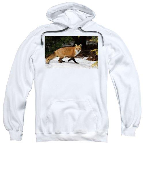 Mr Fox Sweatshirt
