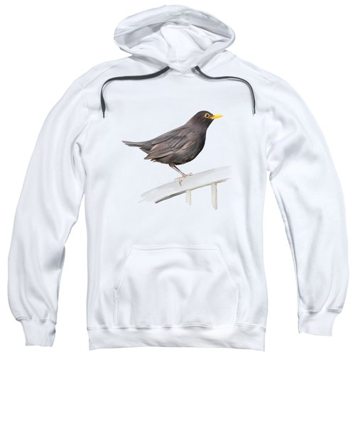 Ms. Blackbird Is Brown Sweatshirt